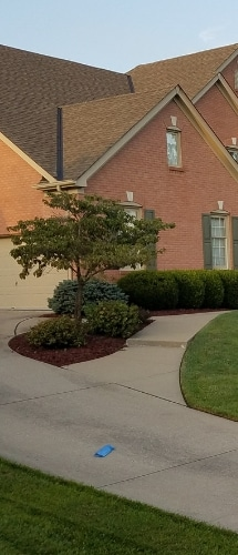 A home with multiple flower beds containing trees and shrubs. All are neatly pruned with fresh mulch.