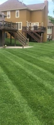 A home with healthy green grass after being fertilized.