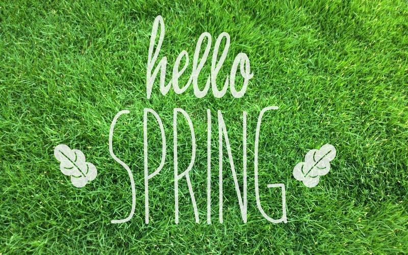 Spring Lawn Care Tips Kansas City